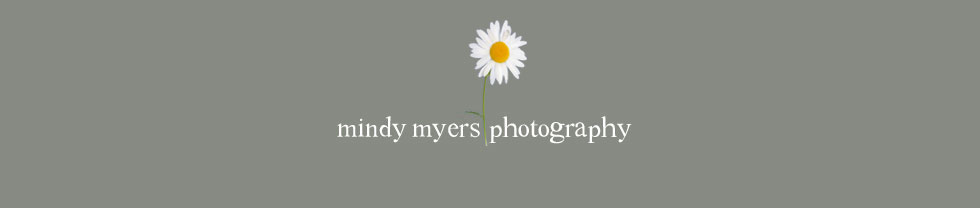 mindy myers photography logo